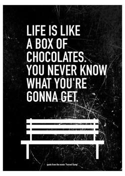 LIFE IS LIKE A BOX OF CHOCOLATES. YOU NEVER WHAT YOU'RE GONNA GET. quote from the mtvie Tyrest dump