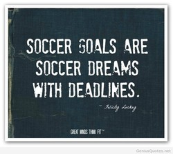 SOCCER GOALS 