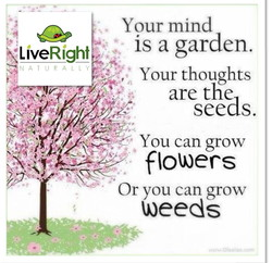 Right 