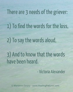 There are 3 needs of the griever: 1) To find the words for the loss, 2) To say the words aloud, 3) And to know that the words have been heard. - Victoria Alexander O Marianne Sooty - www.HealingPetLoss.com