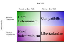 Free Will 