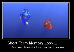 Short Term Memory Loss . 