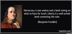 Democracy is two wolves and a lamb voting on 