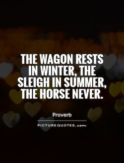 THE RESTS 