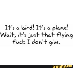 If's a Gird! plane! 