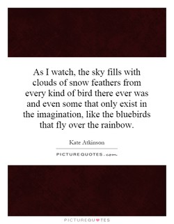 As I watch, the sky fills with 