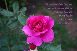 'We can complain because 