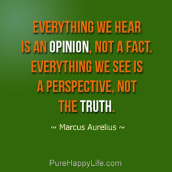 EVERYTHING WE HEAR 