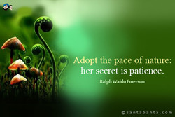 Adopt the pace of nature: 