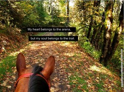 My heart belongs to the arena, 