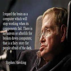 I regard the brain as a 