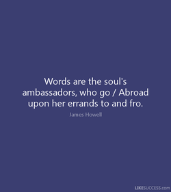 Words are the soul's 