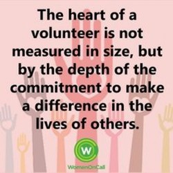 The heart of a 
