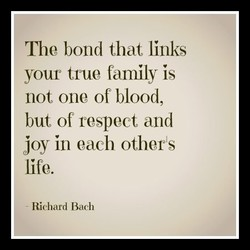 The bond that links 