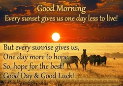 OGoöd Morning 