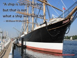 IS safesin harbor 