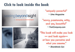 Click to look inside the book 