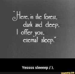 Jerc. in the forest, 