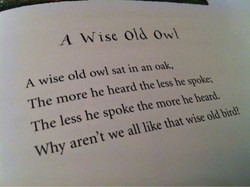 A Wise Owl 