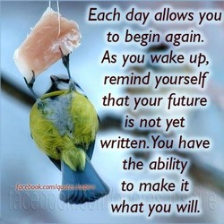 Each day allows you 
