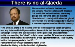 There is no al-Qaeda 