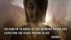 HOLDING ON TO ANGER IS LIKE DRINKING POISON AND 