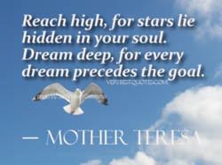 Reach high, for stars lie 