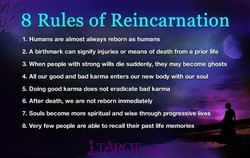 8 Rules of Reincarnation 