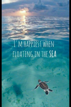 -I'M WHEN 