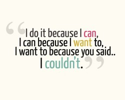 I do it because I can, 