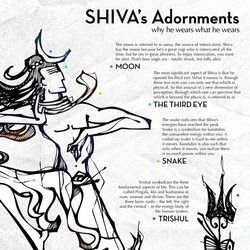 S H I VA's Adornments 