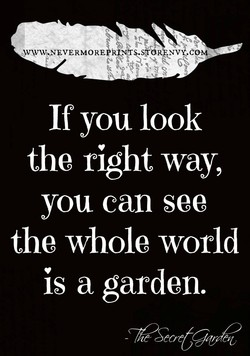 k si6 NV .COM 