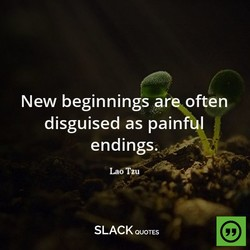 New beginnings ar often 