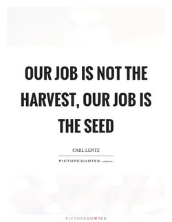 OUR JOB NOT THE 