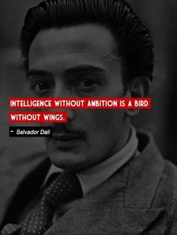 INTELLIGENCE WITHOUT AMBITION IS A BIRD 