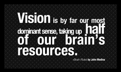 Vision is by far our most 