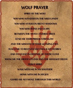 WOLF PRAYER 