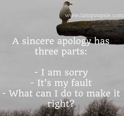 w.iam oo sie.co 