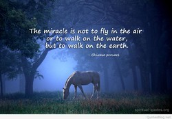 The miracle is not to fly in the air 