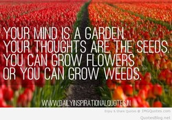 YOURTHOU H 