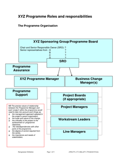 XYZ Programme Roles and responsibilities 