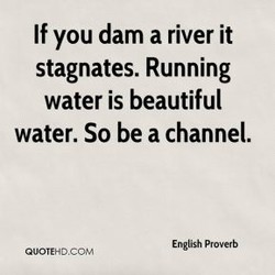 If you dam a river it 