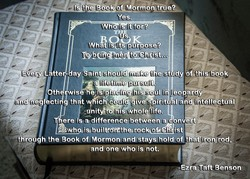the Book of'Mormon•r.ye? 