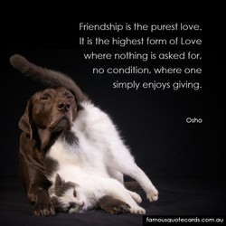 Friendship is the purest love. 