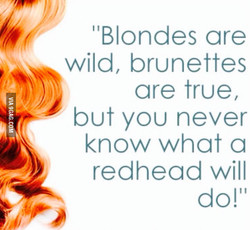 'IBIondes are 