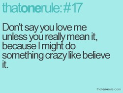 Don't sayyou love me 