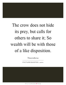 The crow does not hide 
