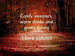 Comfy sweaters, 
