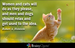 Women and cats will 