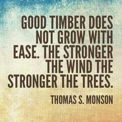 GOOD TIMBER DOES 
